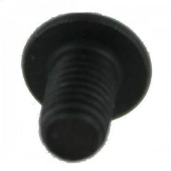 Bolt M3X5 ISO7380-1 (G29)