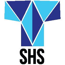 SHS Motor Brush