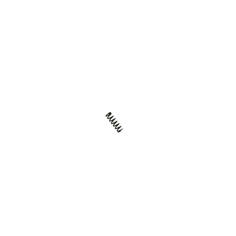 15564 CZ75D Rear Sight Spring 2-06